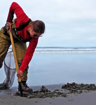 researcher digging in sand