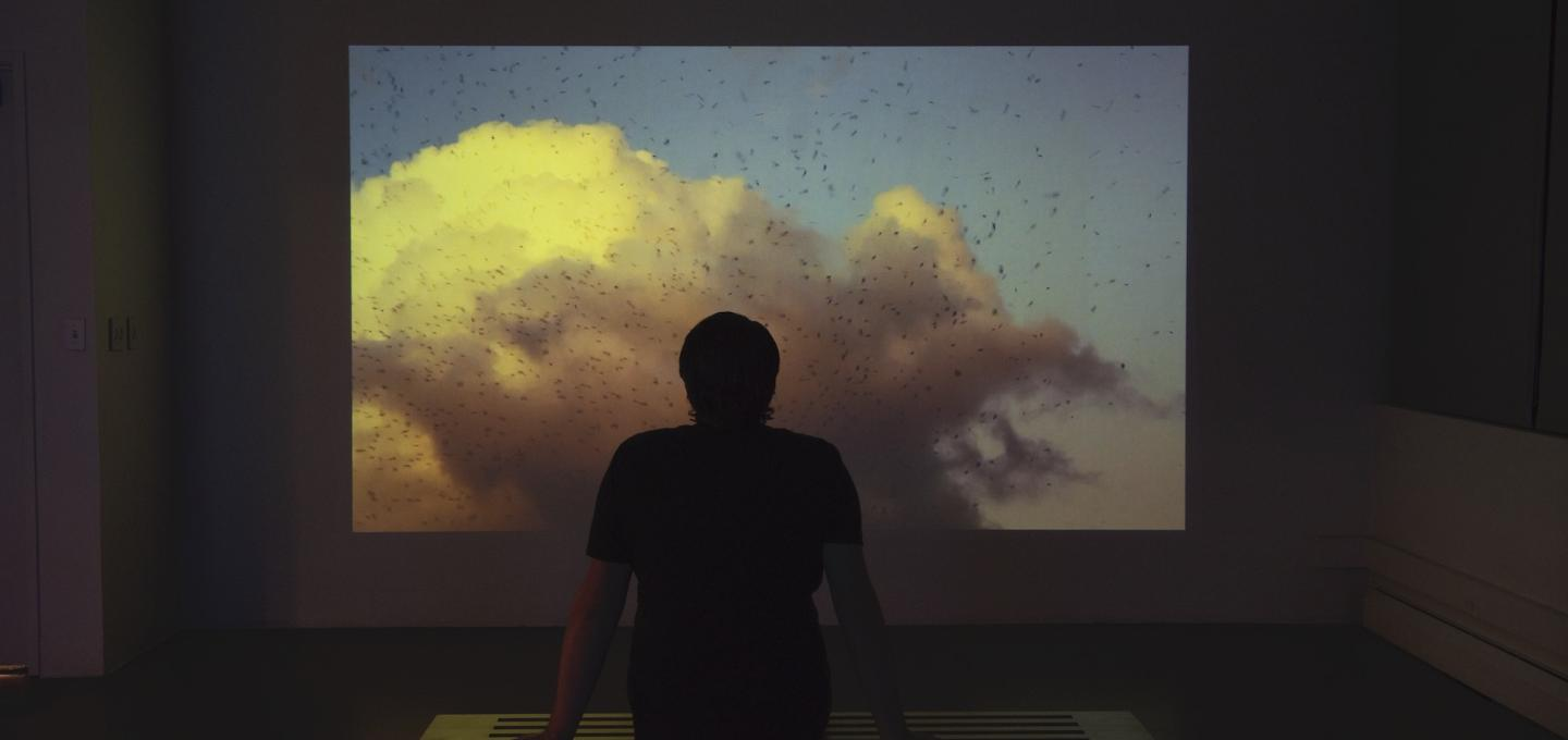Silhouette of a person in front of a video projection featuring clouds and a large flock of birds