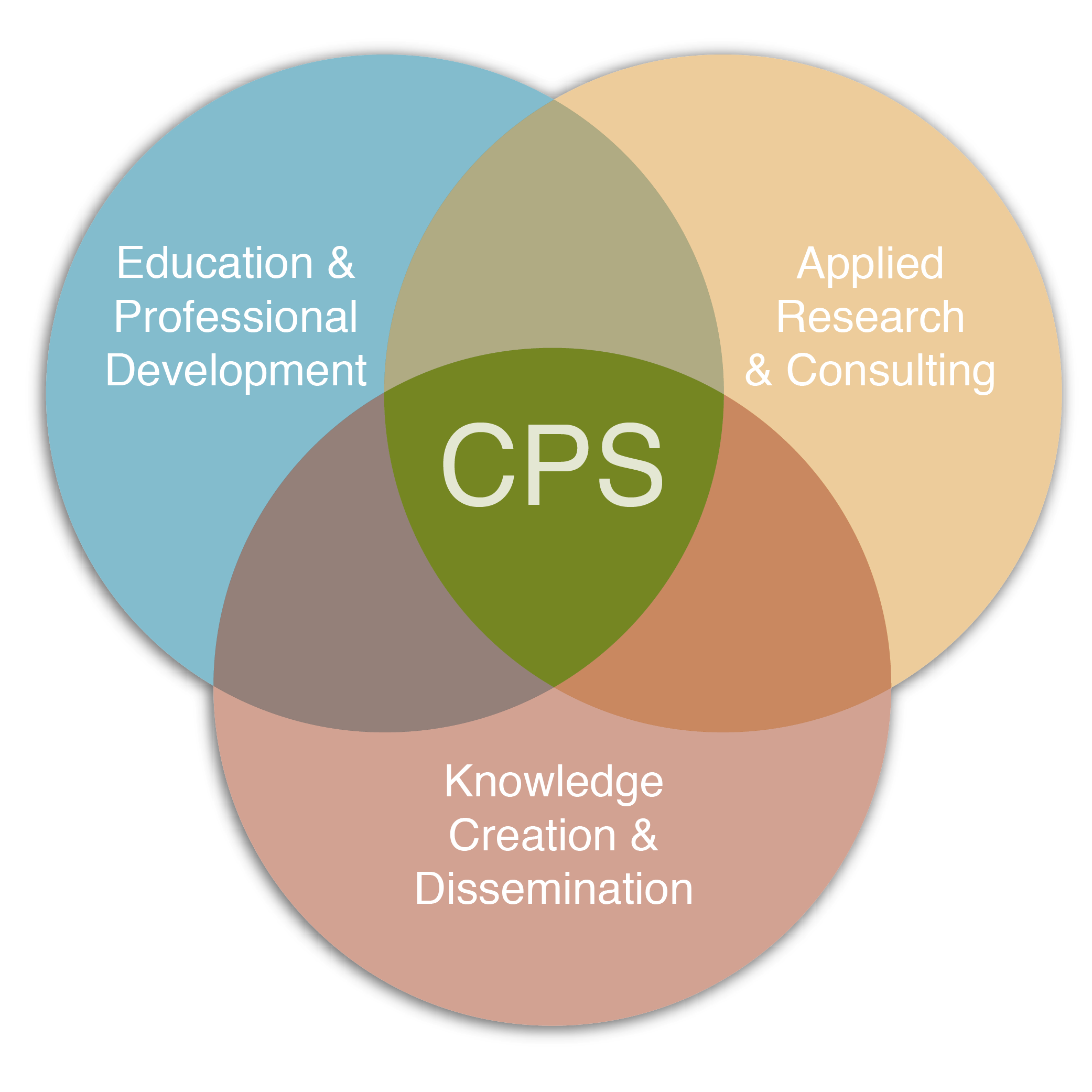 center for public service is the center for education and professional development, applied research and consulting, and knowledge creation and dissemination