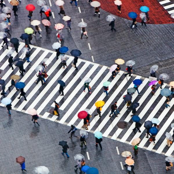 Aerial view of pedestrians on street under umbrellas