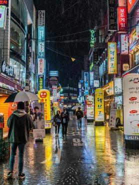 Rainy street in Seoul, South Korea with many illuminated street signs