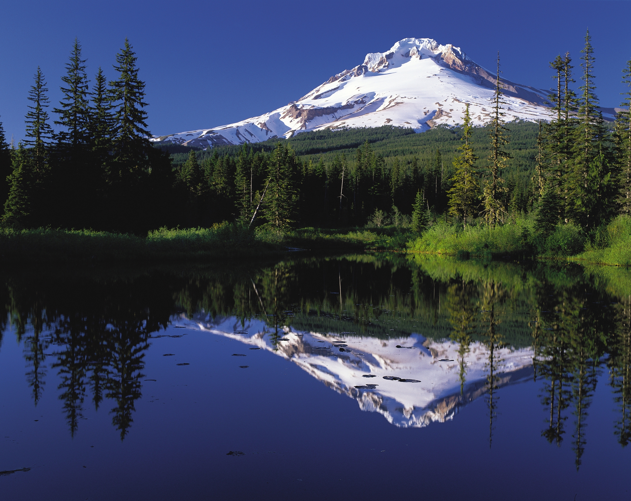 Majestic Mount Hood from Trillium Lake.