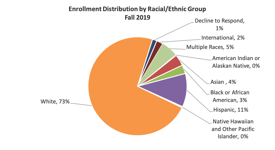 Enrollment distribution by racial/ethnic group for fall 2019