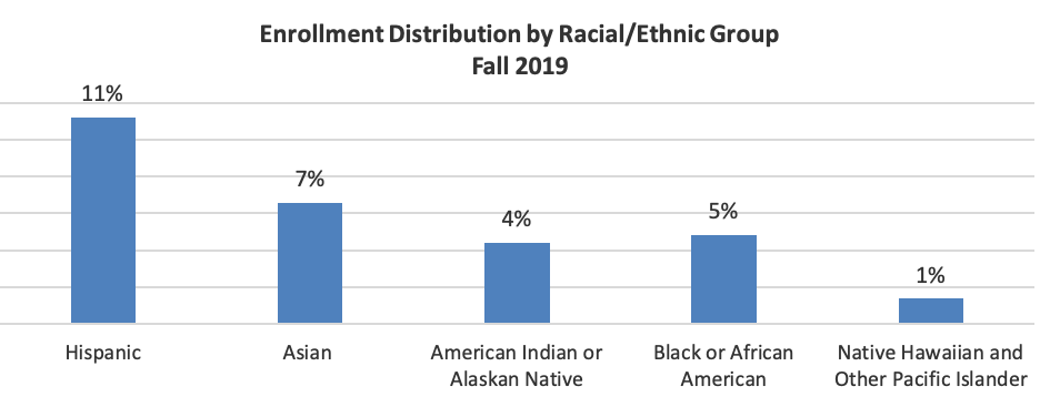 Enrollment distribution by racial/ethic group for fall 2019