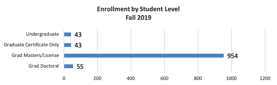 Enrollment by student level for fall 2019