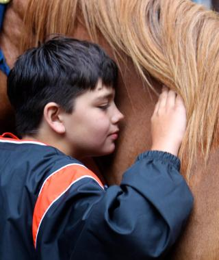 A child leans against the neck of a horse.