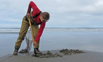 Searching for Contaminants in Oregon's Coastal Waters