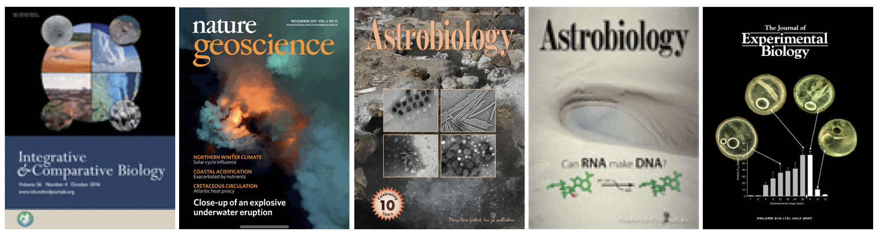 Covers of several publications by CLEE researchers.