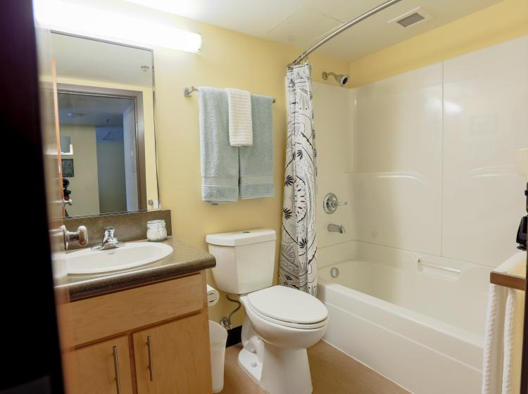 Bathroom with tub and shower in furnished one bedroom