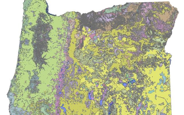 Historical vegetation map for Oregon produced by INR.