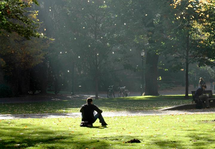 Picture of student sitting on grass in a ray of sunlight