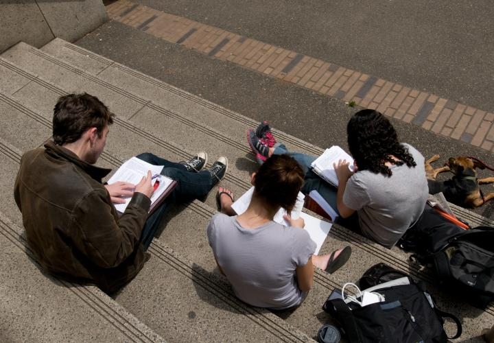 Students studying together while sitting on the front steps of Millar Library