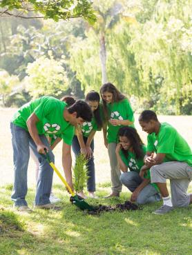 Young people planting a tree