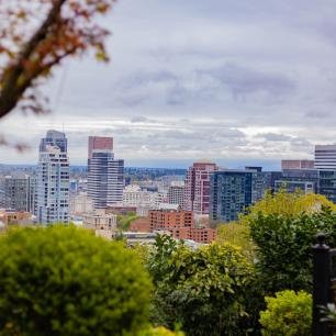 There are shrubs and trees, with the city of Portland in the background.