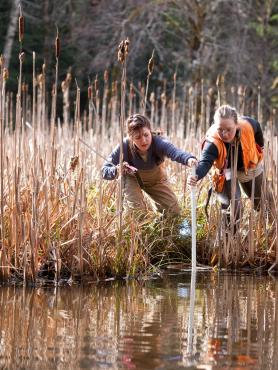 Two researchers taking a water sample in a bog