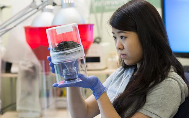 Student observing science experiment