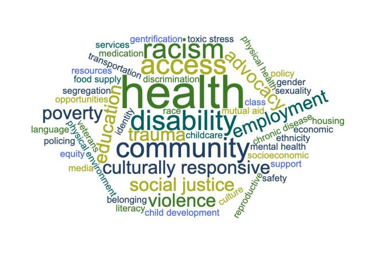 A word cloud of words associated with the social determinants of health. Example: racism.