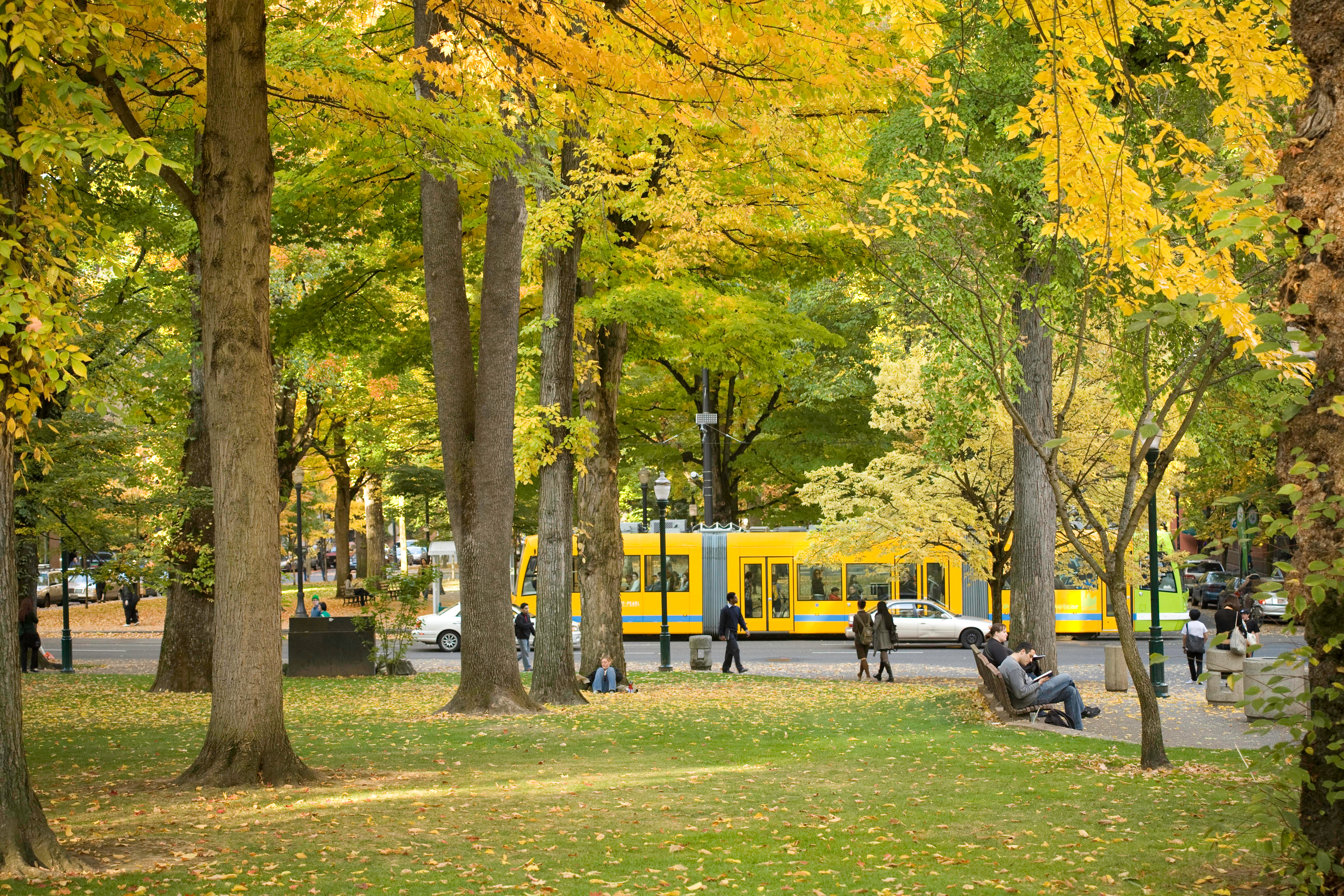 A yellow streetcar moves through the park blocks