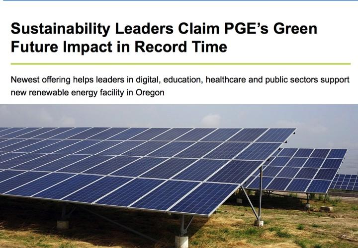 sustainability leaders claim page's green future impact in record time