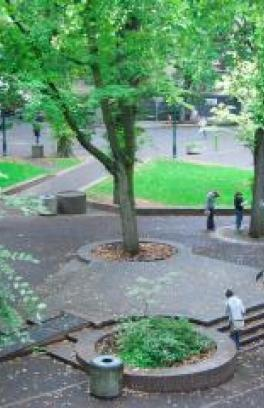 four people in the psu park blocks