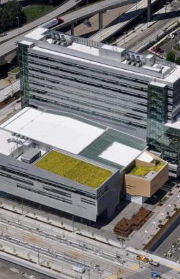 large building with green roof on southern roof exposure