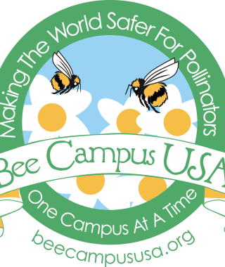Bee campus usa making the world safer for pollinators one campus at a time beecampususa.org