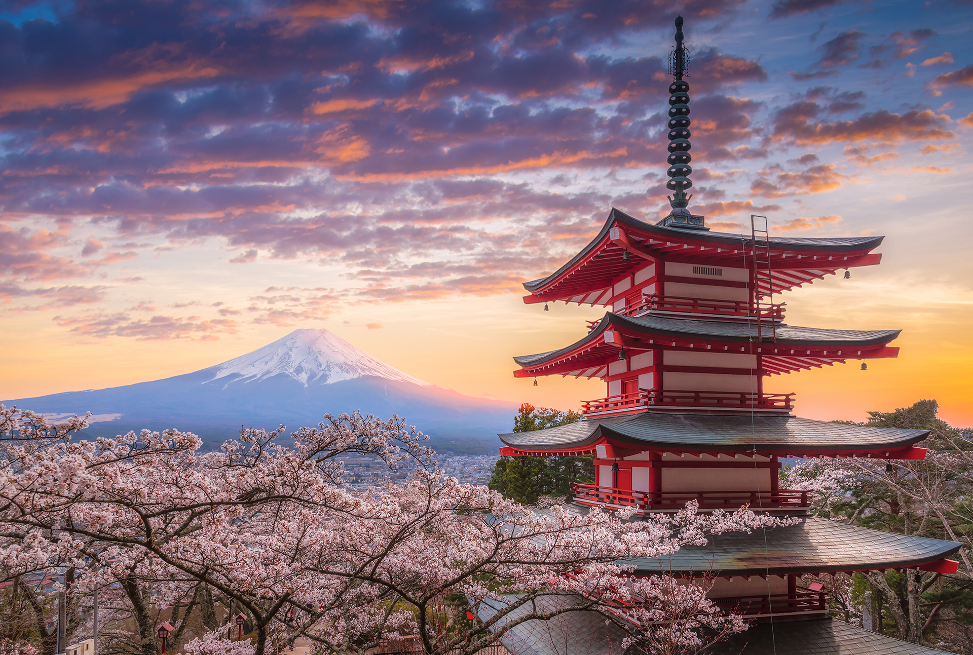 View of Mt. Fuji over cherry trees and Japanese architecture